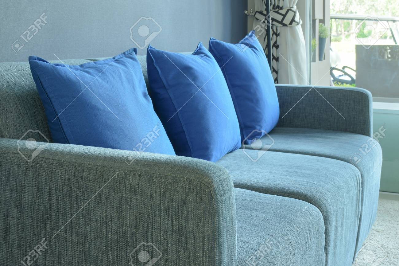 Blue Color Scheme Living Room With Pillows And Sofa