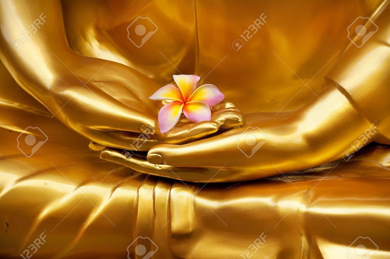 Frangipani in hand of image buddha Stock Photo - 10756965