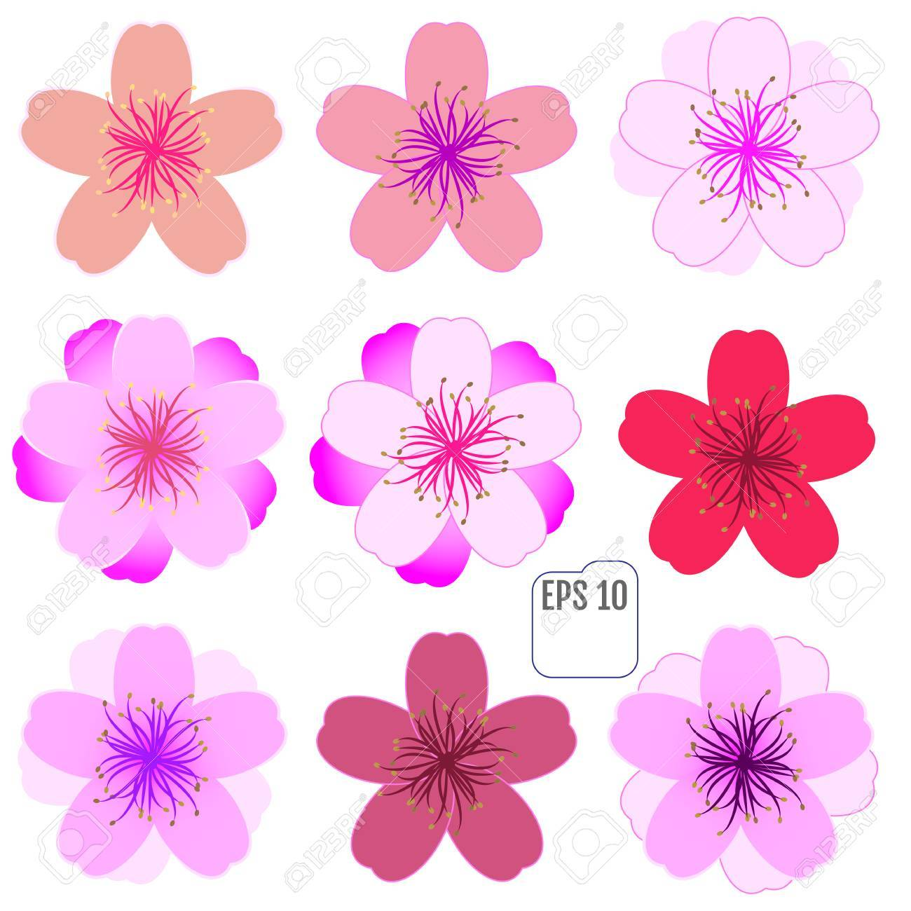 cherry blossom icon set vector royalty free cliparts vectors and rh 123rf com Pink Cherry Blossom Tree Pink Cherry Blossom Tree