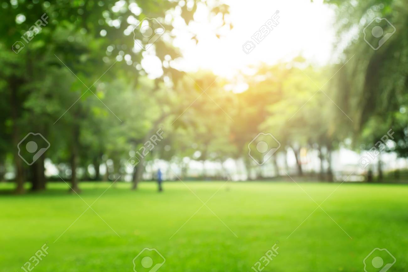 Photo Of Blurred Green Garden On Summer For Background Texture