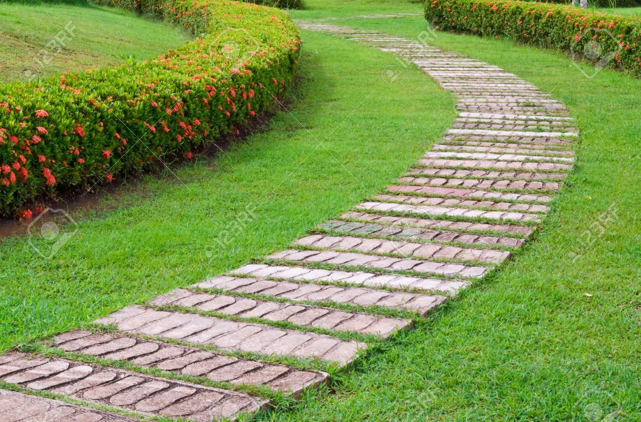 garden stone path with grass Stock Photo - 7773942