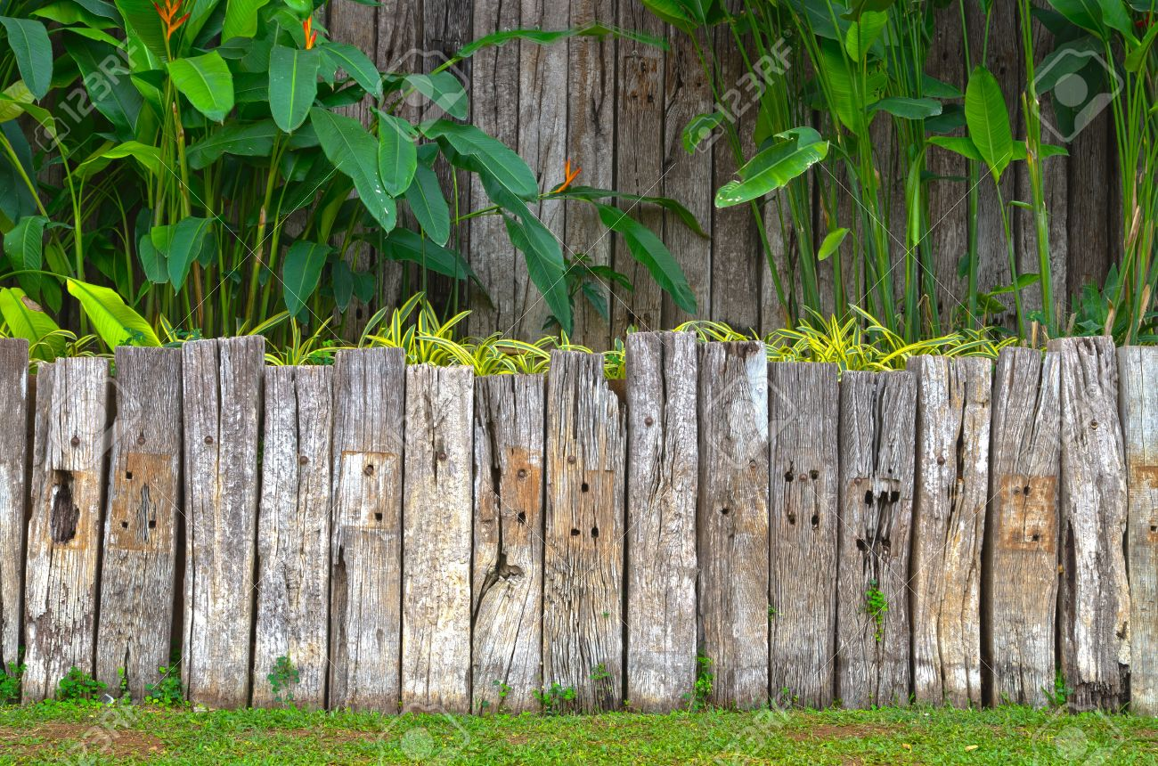 fence post old wooden fence in garden with plant