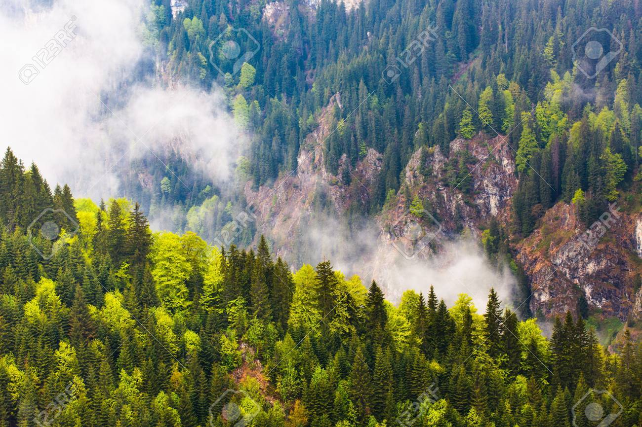 Landscape with Parang mountains in Romania in a foggy rainy day Stock Photo - 13820586