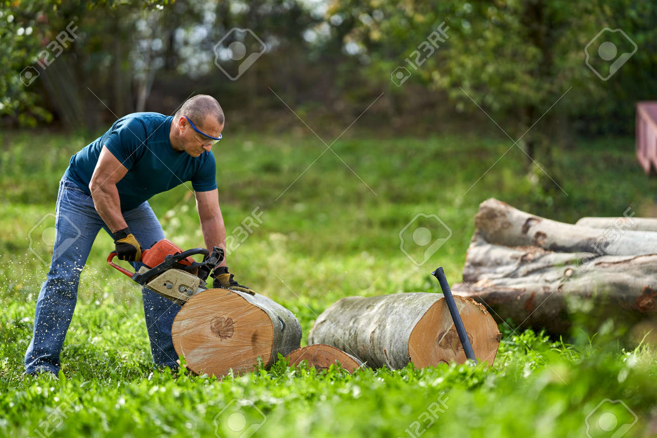 Lumberjack cutting beech logs with the chainsaw - 159598887