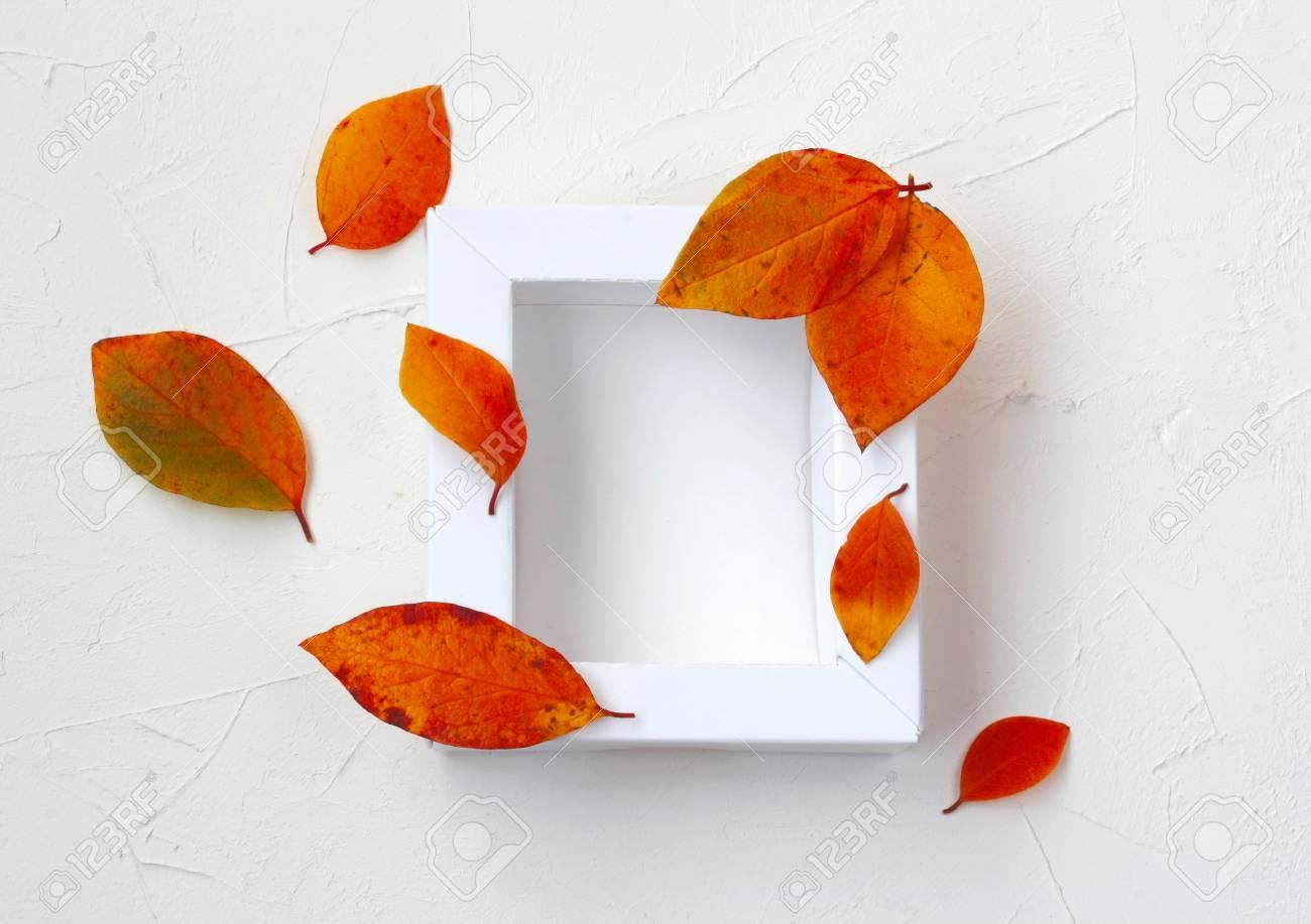 Herbst Mock-up Mit Weißem Rahmen, Mehrfarbige Blätter, Auf Weiß ...