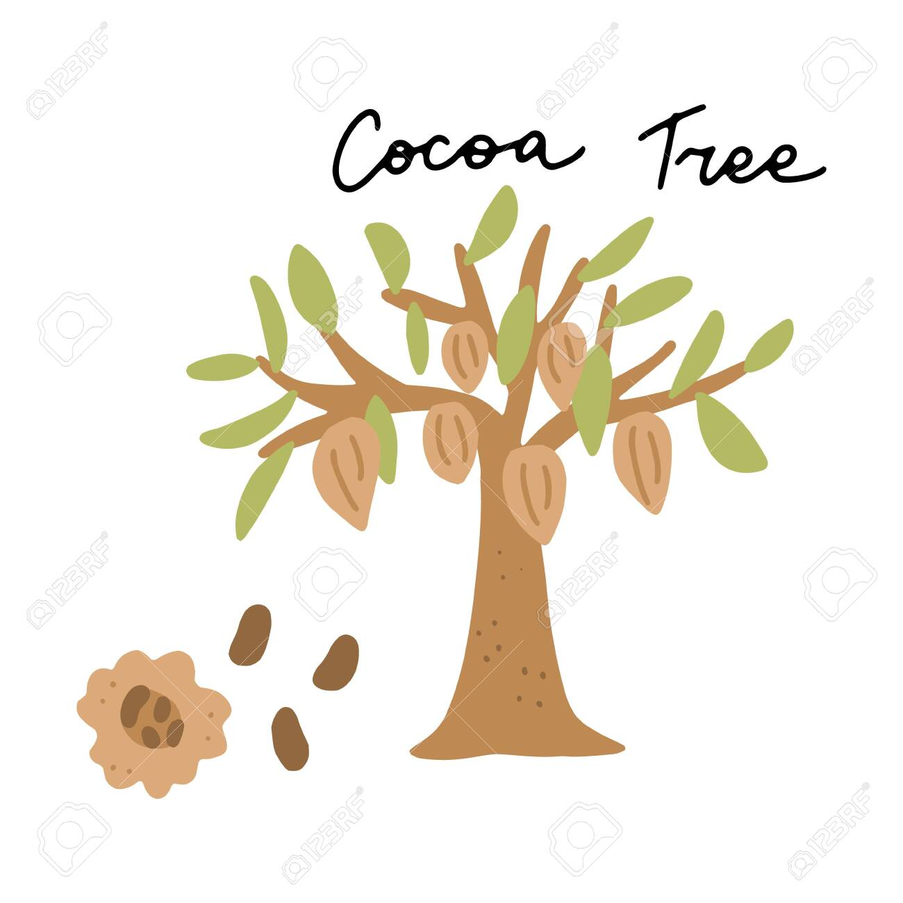 South America Landmark Cocoa Tree Vector Illustration Vector Royalty Free Cliparts Vectors And Stock Illustration Image 136635559