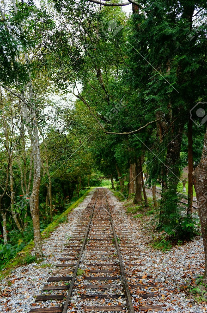 empty railway with nice scenery background stock photo, picture and