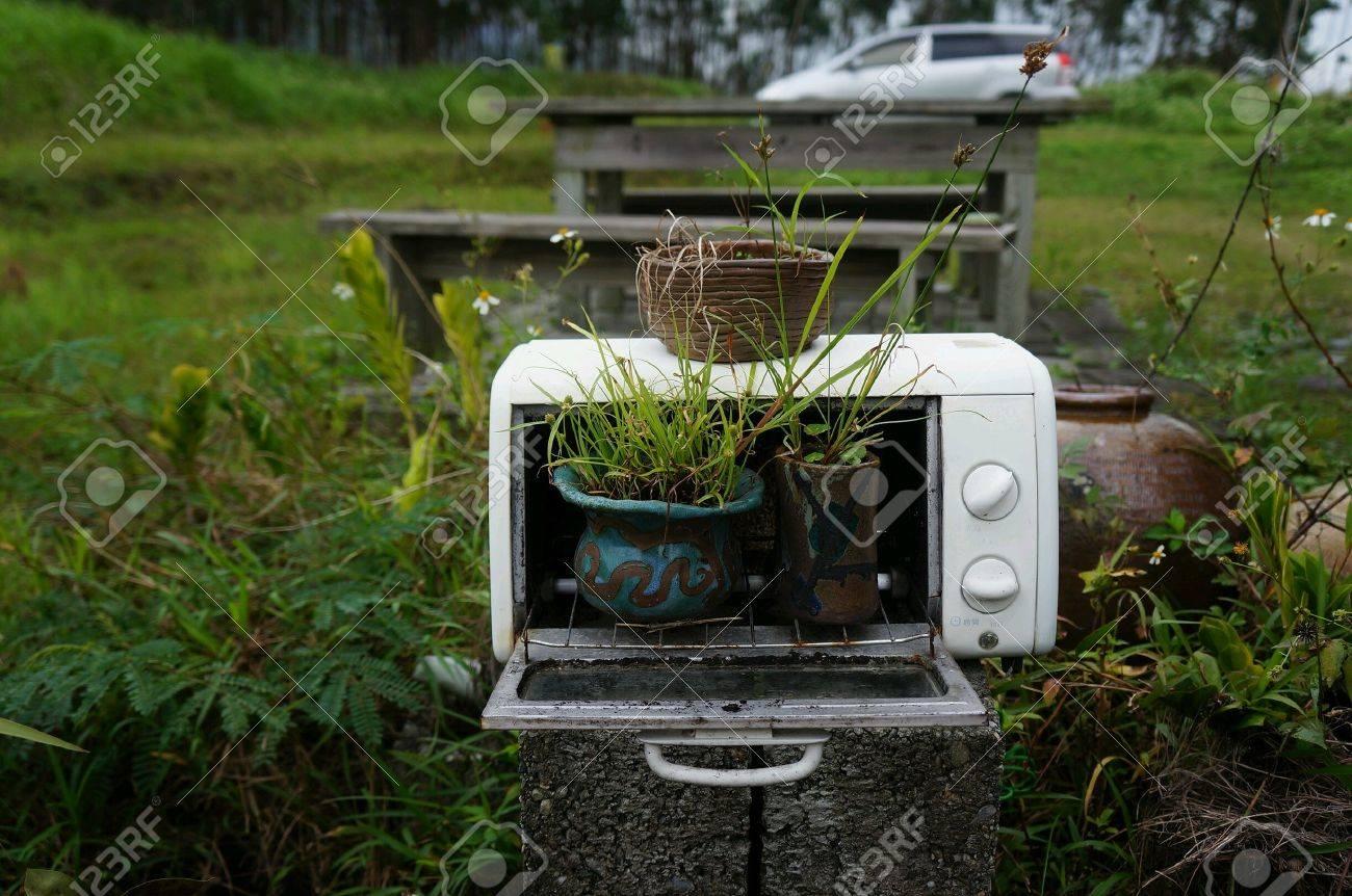 Réutiliser et recycler un micro-ondes comme décoration de jardin
