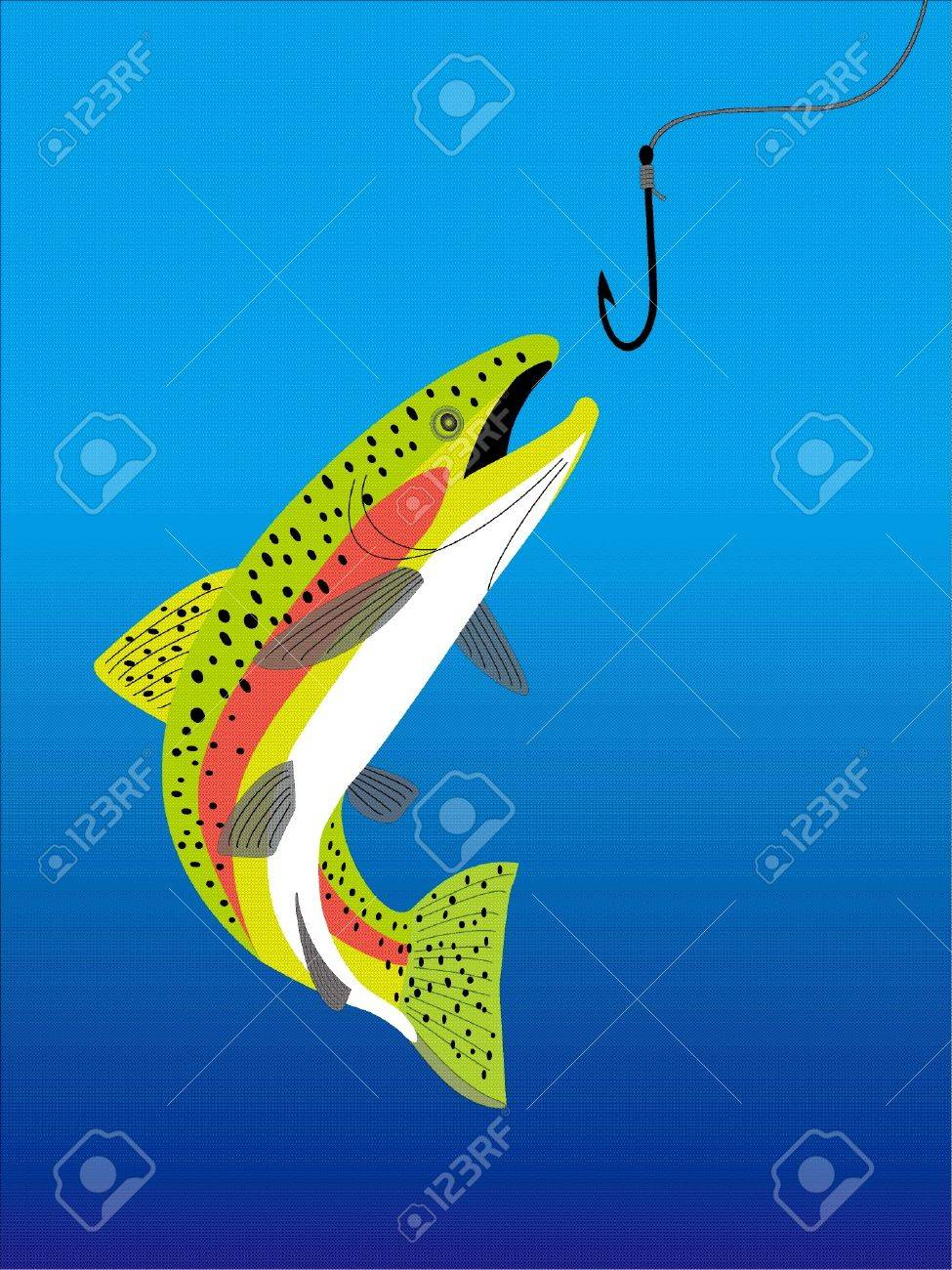 a trout Stock Vector - 20489479