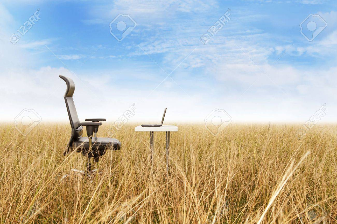 Outdoor Office: Outdoor Office In A Golden Grass With A Clear Sky