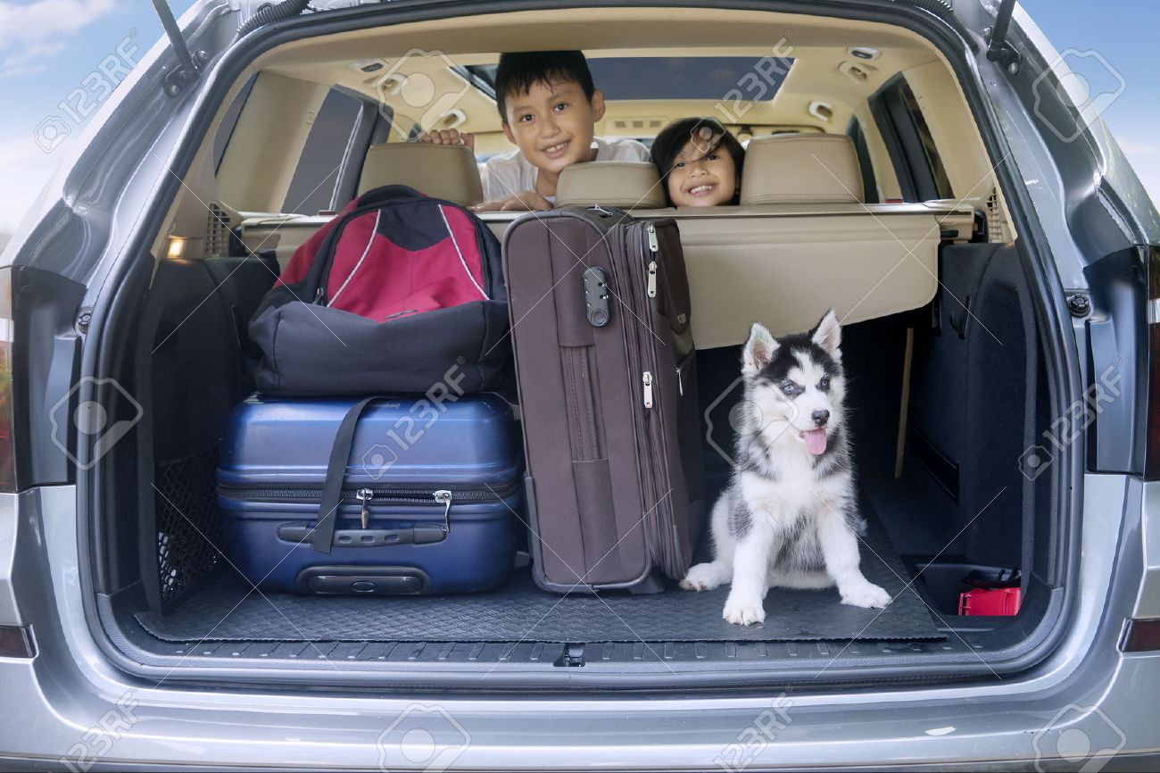 Two cheerful children smiling inside a car with husky dog and luggage for traveling Stock Photo - 55340600