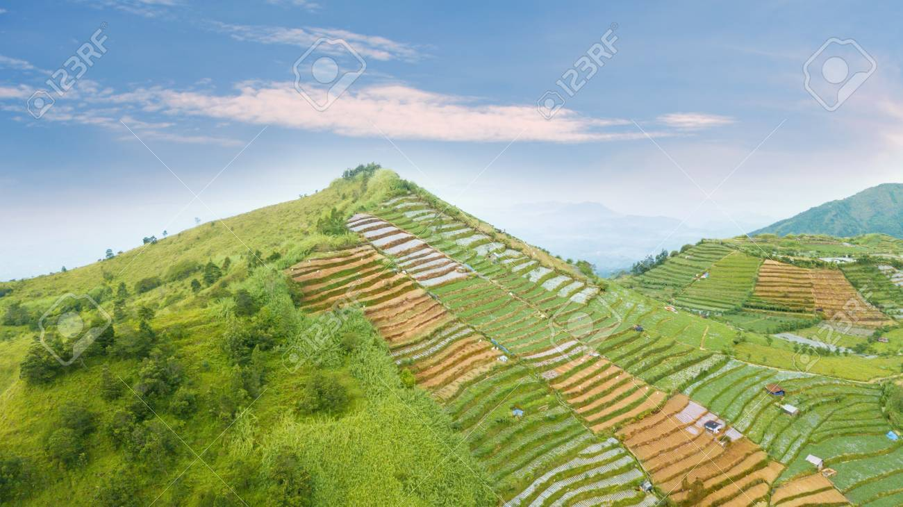 Beautiful Aerial View Of Farmland With Terraced System In The
