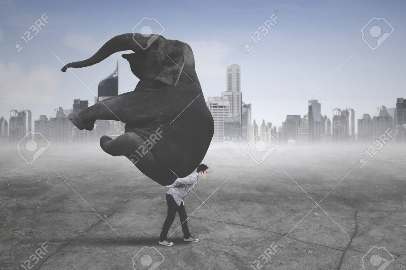 Picture of young businessman wearing casual clothes while carrying an elephant with modern city background - 101600011