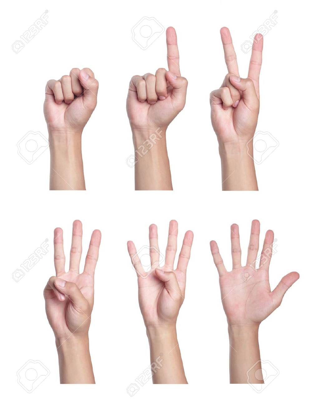 Counting men hands (0 to 5) ,Isolated on white background. Stock Photo - 5563152