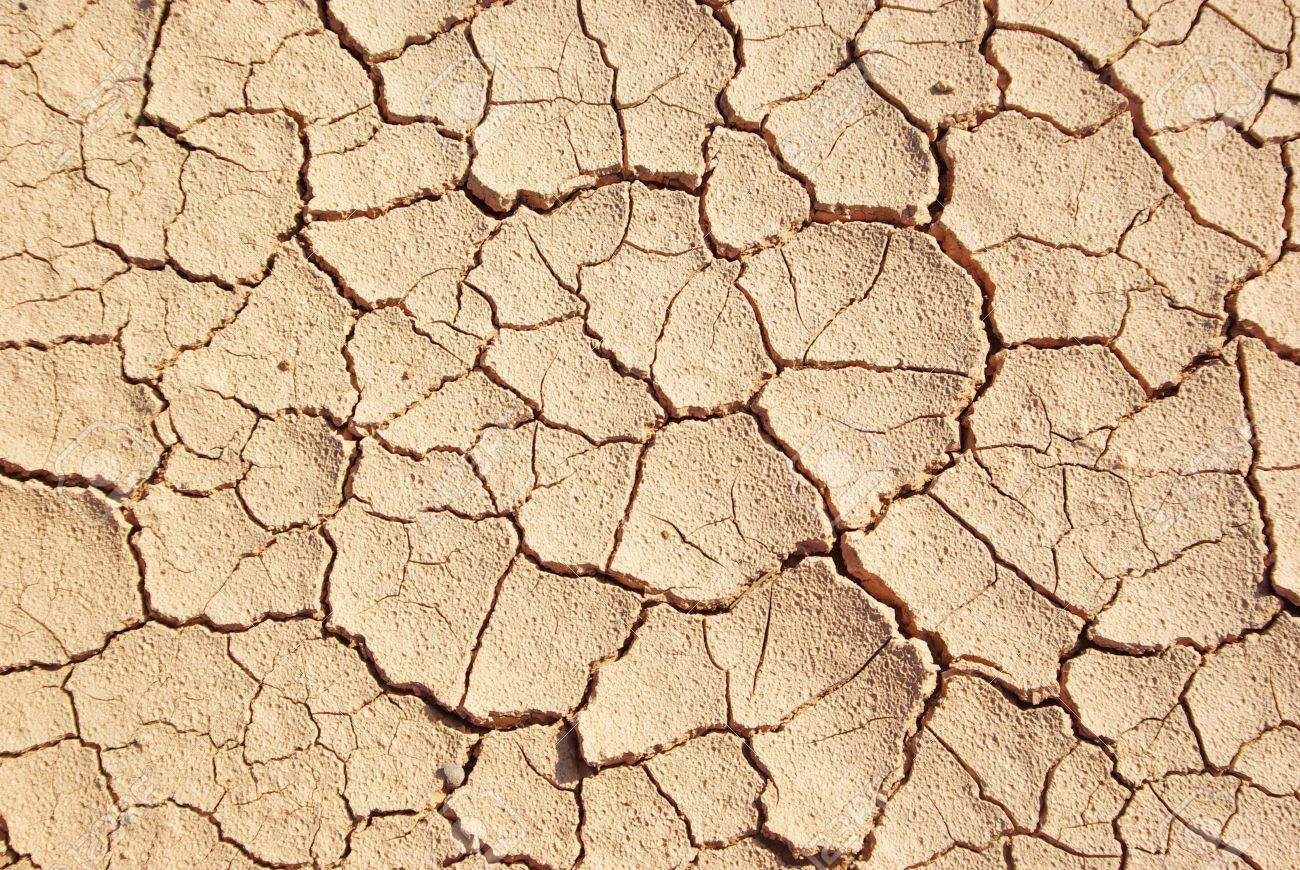 Cracked and dried mud texture Stock Photo - 5911851