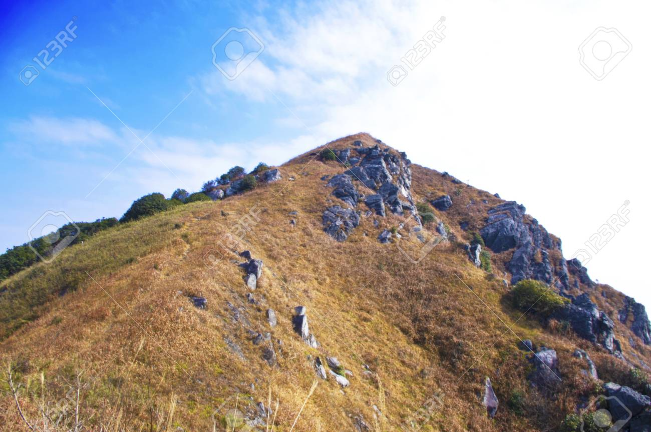 mountaintop with yellow grass at south china Stock Photo - 16952736