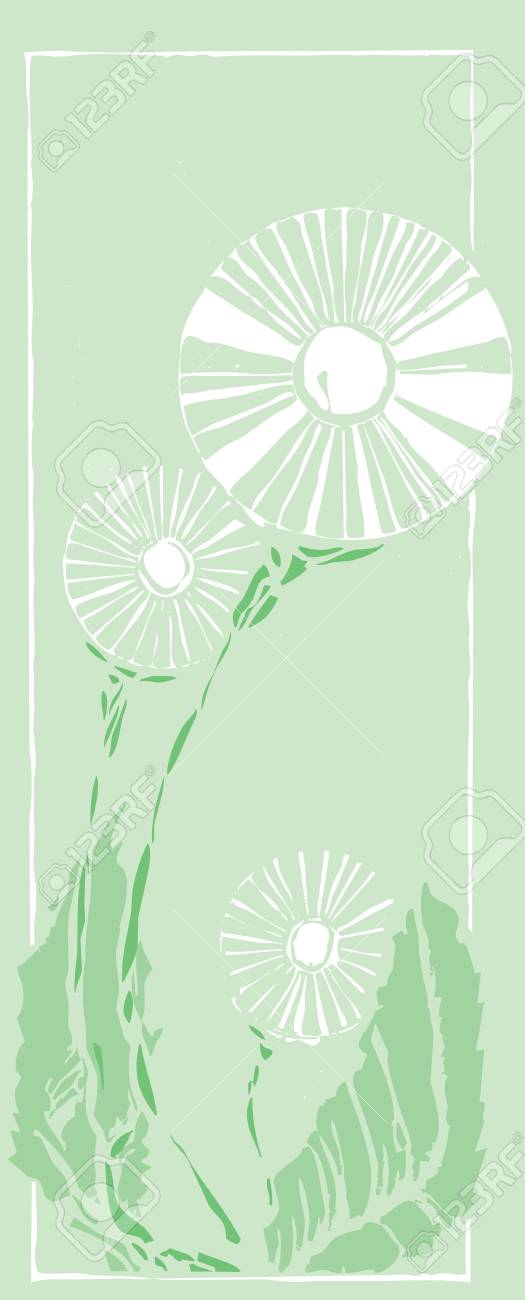 Scratchboard image of a common dandelion weed. Stock Vector - 4670354