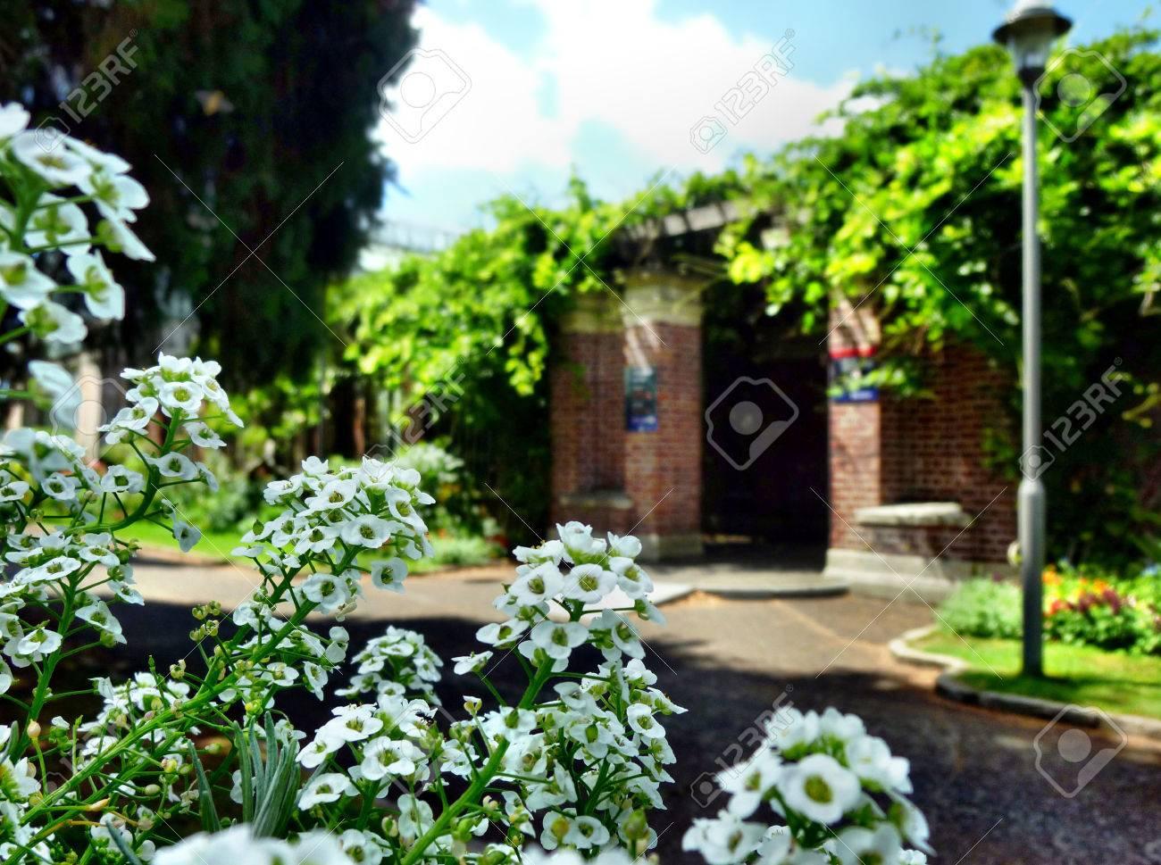 Giardini da copiare cool idee giardino arredo da giardino with