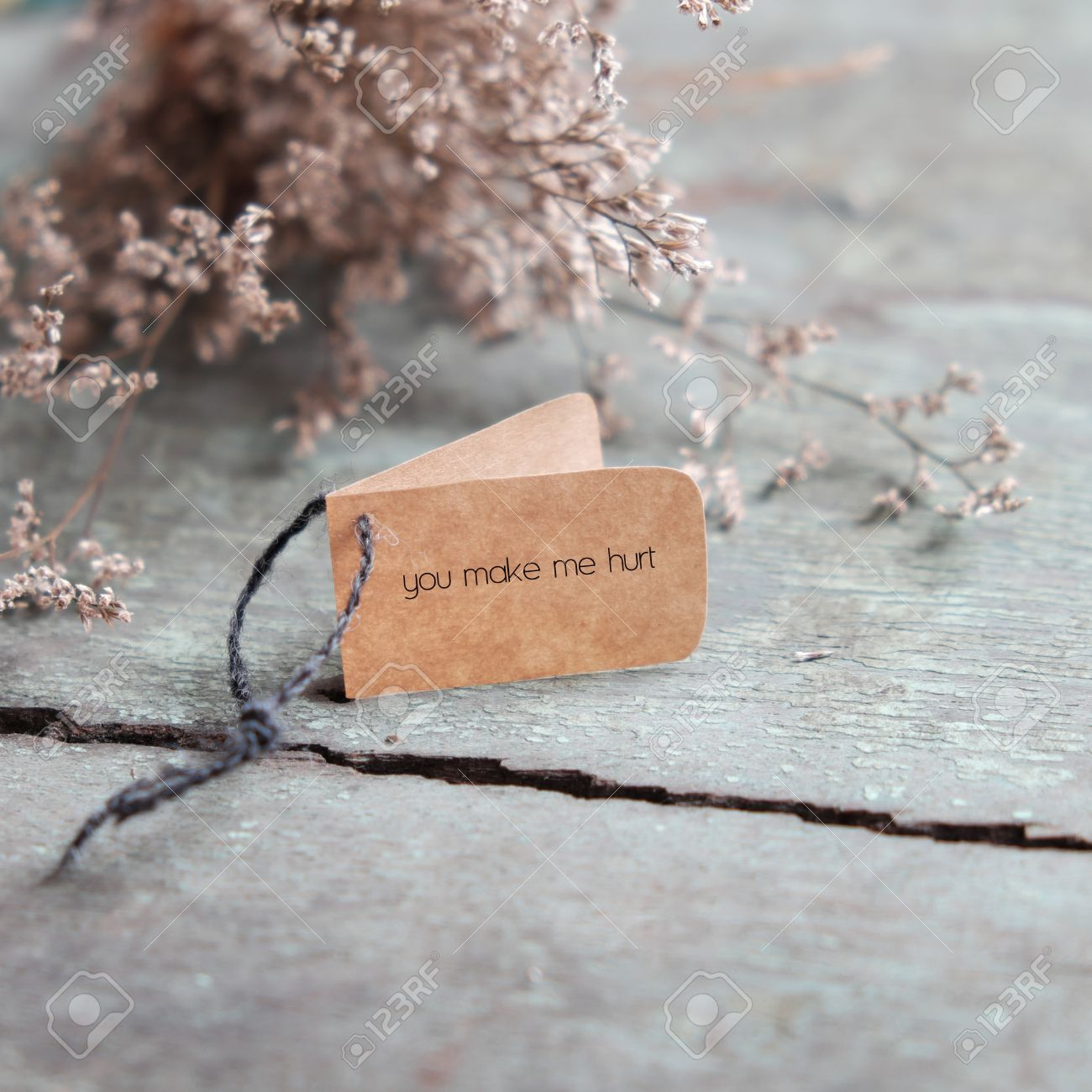 Charming Sad Background In Love, With Message On Paper As: You Make Me Hurt, Amazing Pictures