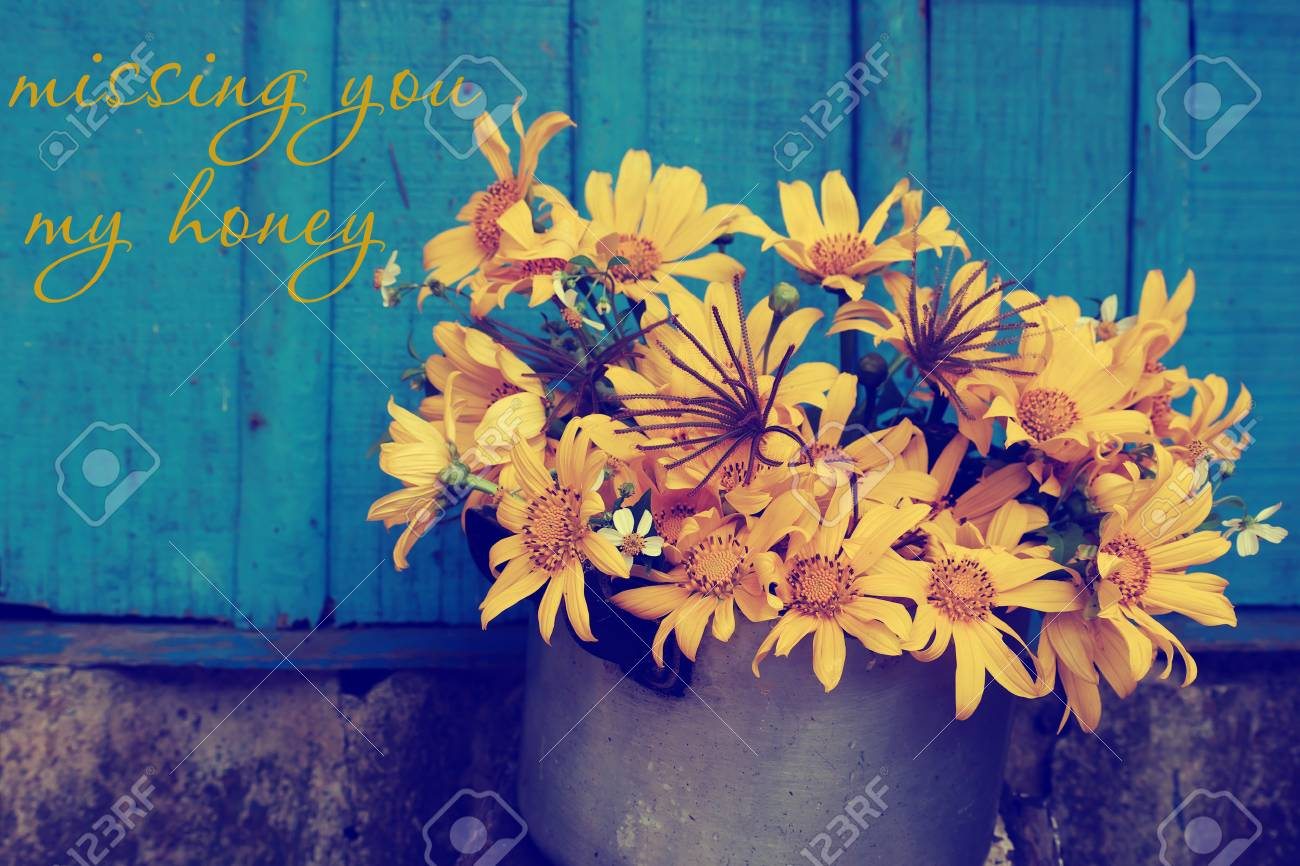 Stock Photo   Vintage Background With Apologize For Break Up Of Love, Hurt,  Sorry Text And Missing, Concept From Wild Sunflower On Rustic Blue Wooden  ...