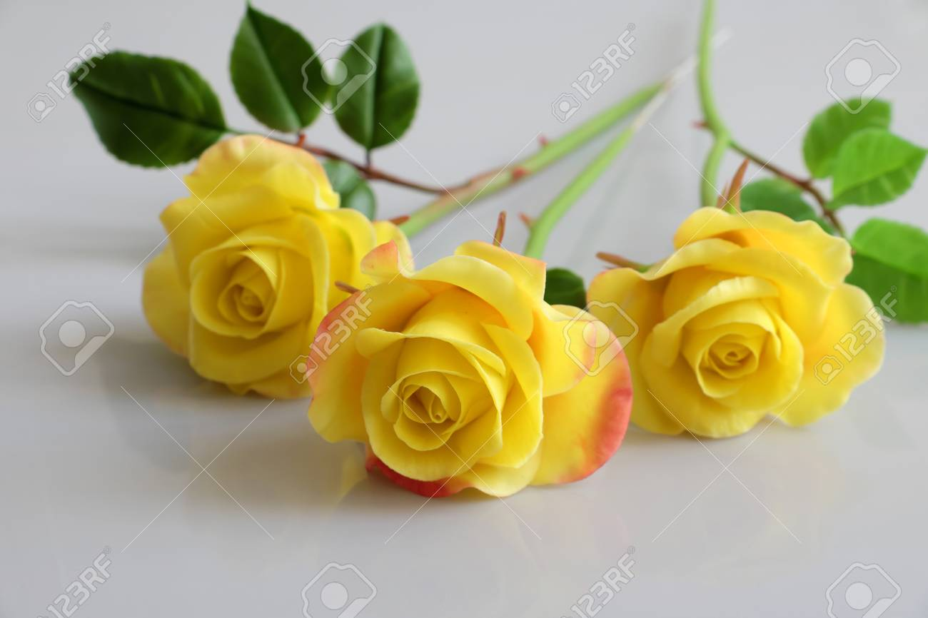 Wonderful clay art with yellow roses flower reflect on white stock stock photo wonderful clay art with yellow roses flower reflect on white background beautiful artificial flowers of craftsmanship with skillful mightylinksfo