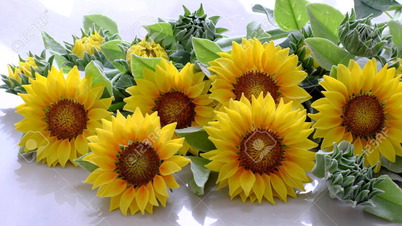 Amazing Clay Flower Handmade Product For Home Decor Sunflower Bouquet Bloom In Yellow And