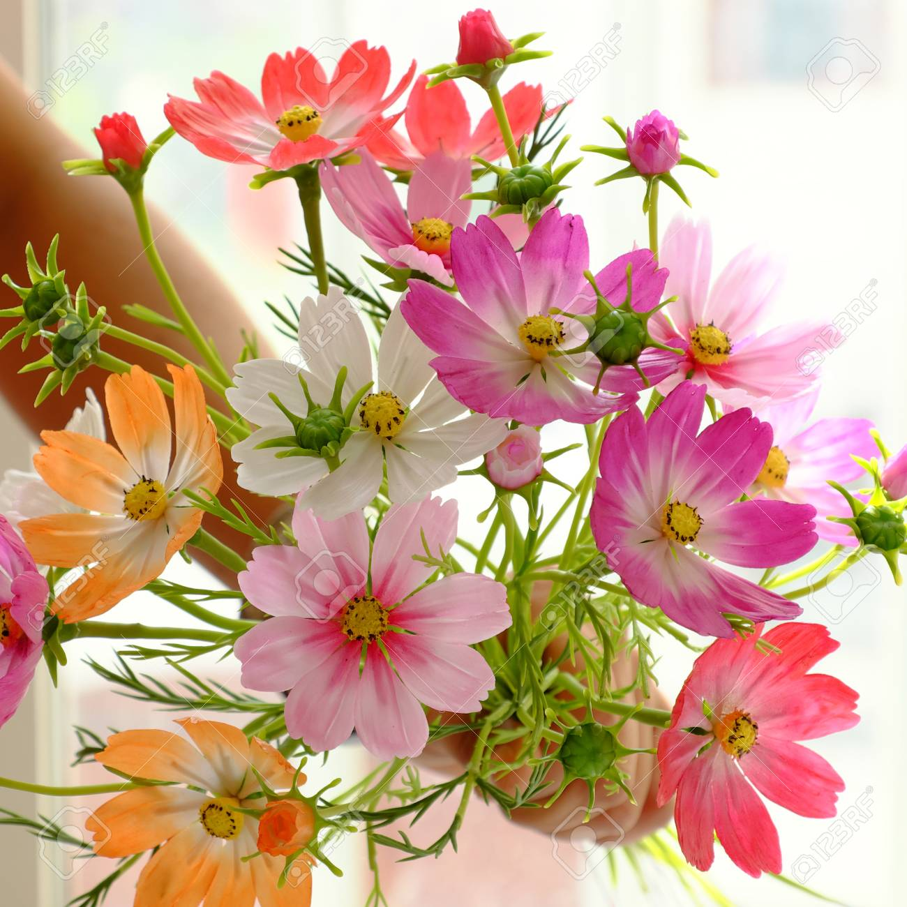 Картинки с несколькими цветами