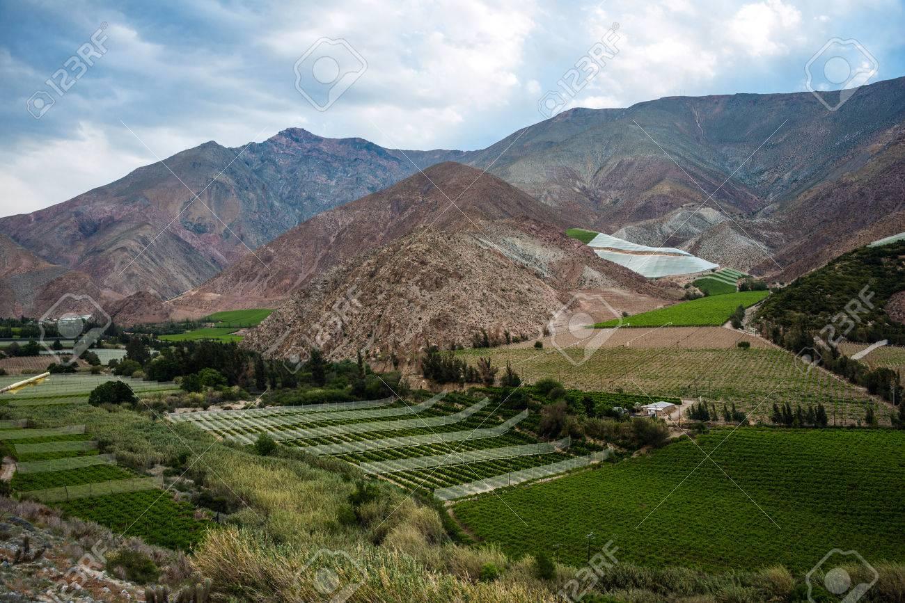 Elqui バレー、コキンボ州、チリ...