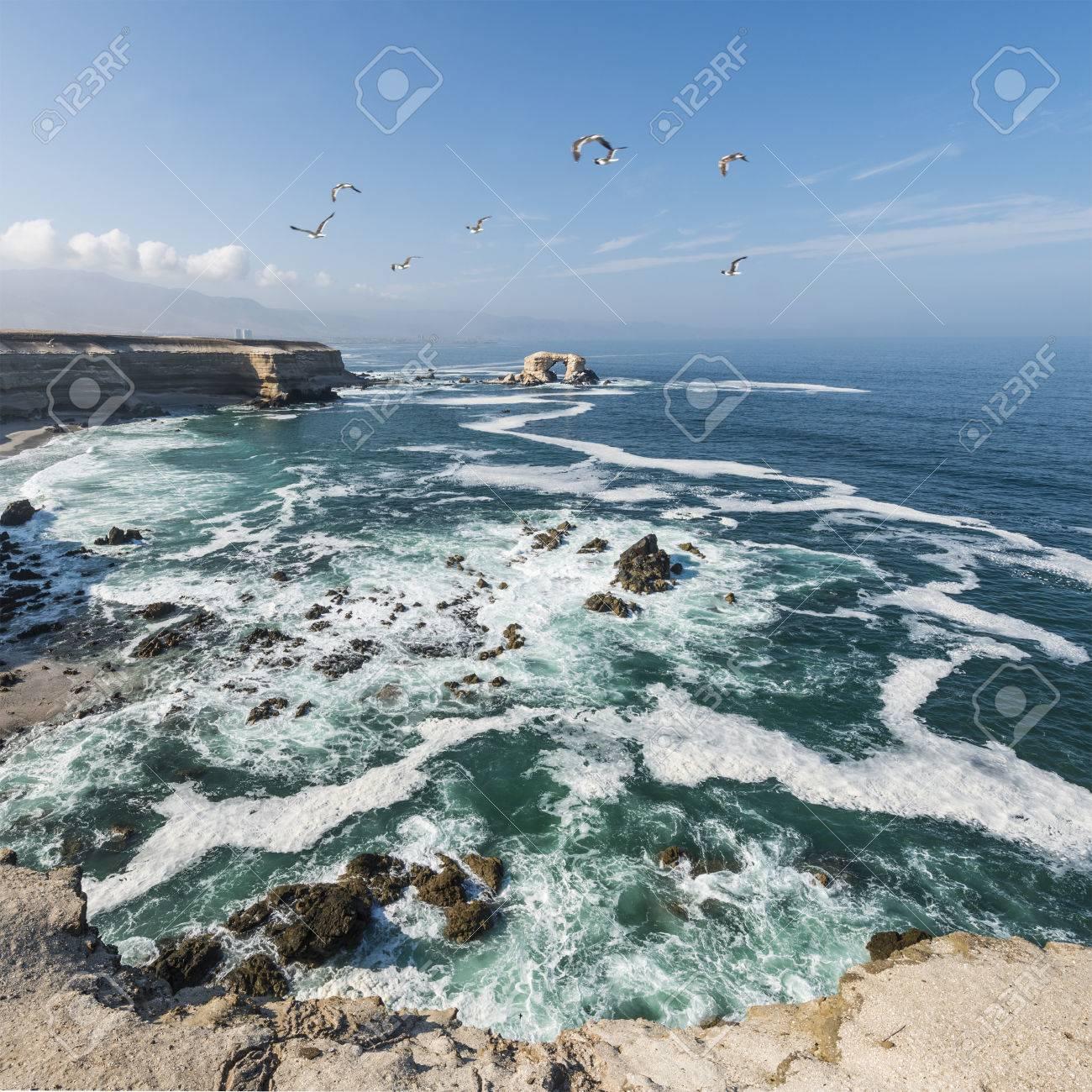 Portada (Arch) Rock Formation, Chilean Coastline, La Portada National Reserve, Antofagasta, Chile - 81976878