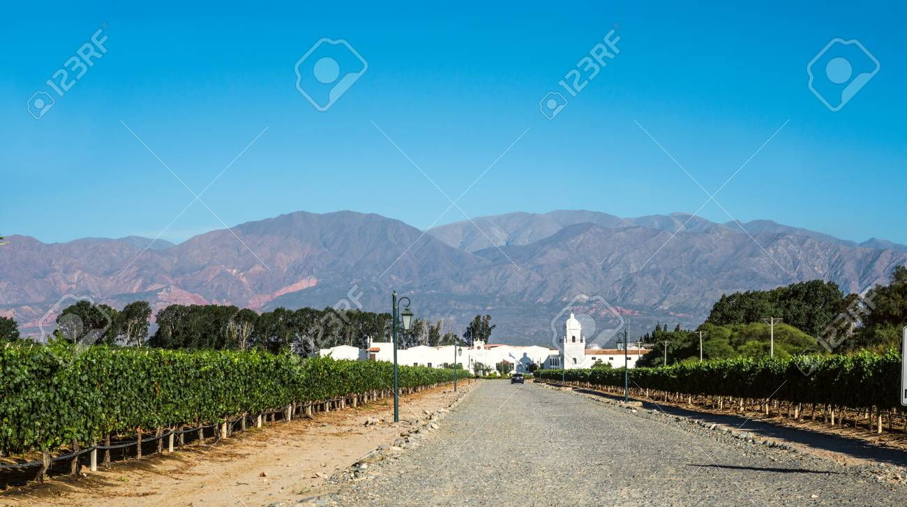 """Cafayate, Argentina - December 4, 2014: Road to the old colonial wine maker 'Bodega El Esteco"""" in Cafayate with the mountains and clear blue sky in the background - 82909727"""