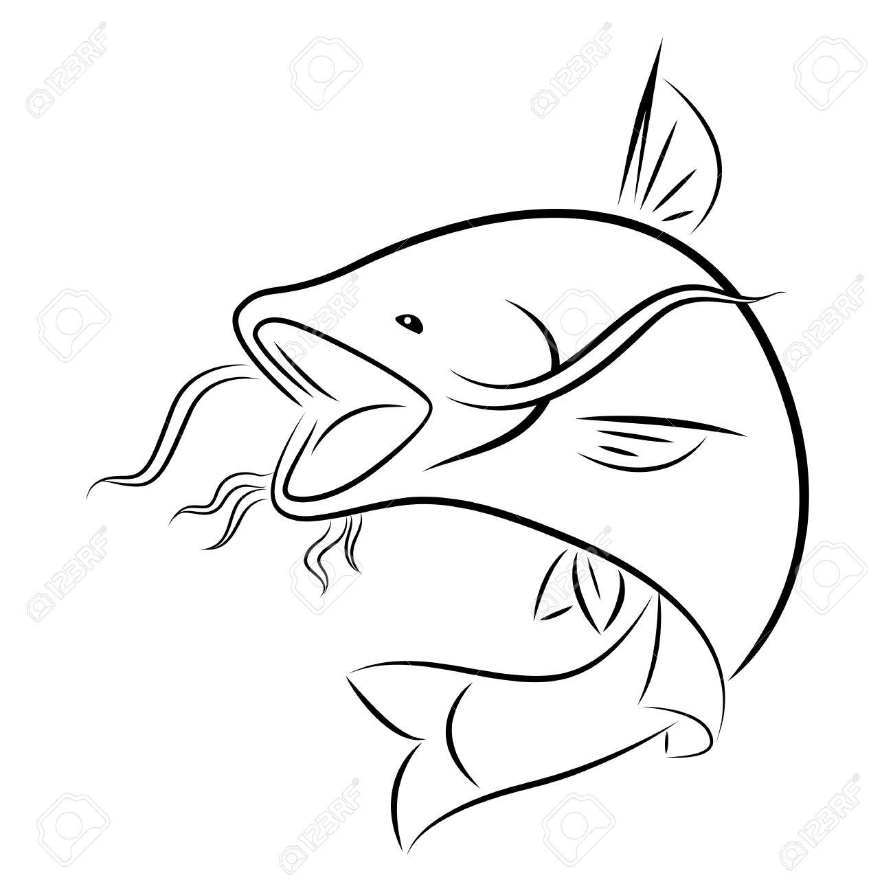 graphic catfish royalty free cliparts vectors and stock Wells Catfish Record graphic catfish stock vector 64864060