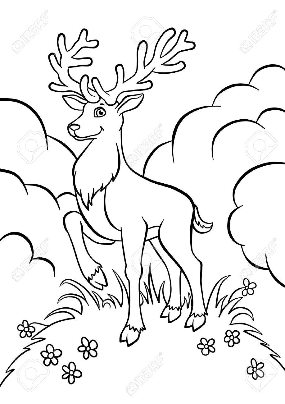 Excelente Dibujos Para Colorear De La Caza De Ciervos Molde ...