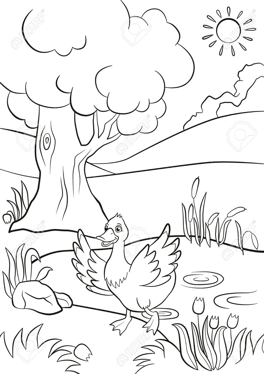 Coloring Pages Cute Duck Runs From The Pond There Are Tree