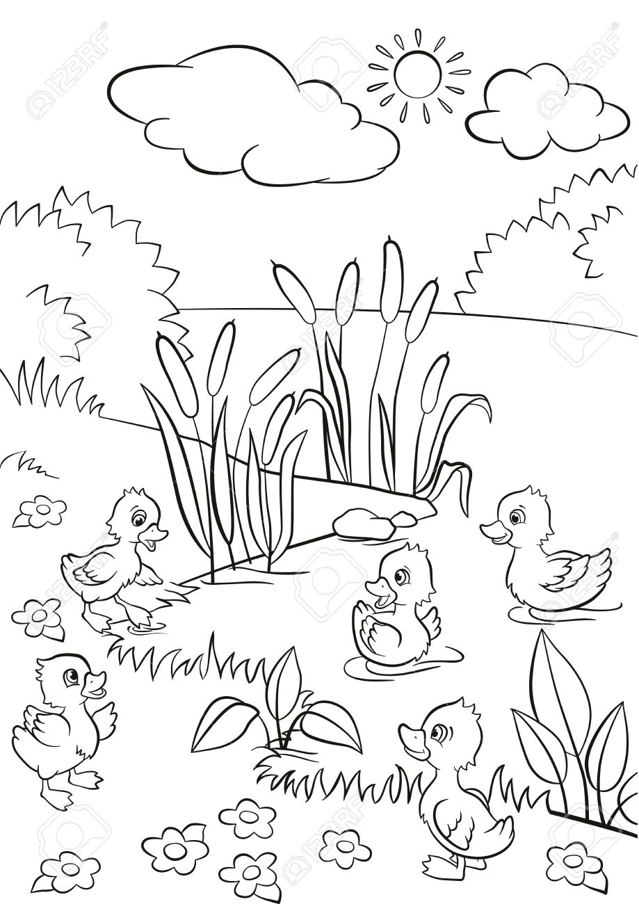 Coloring pages. Five little cute ... | Stock vector | Colourbox | 1300x919