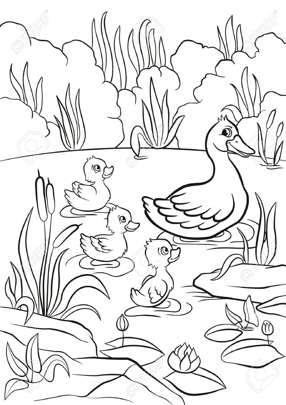 Th the coloring pages - Coloring Pages Kind Duck And Free Little Cute Ducklings Swim On The Lake They