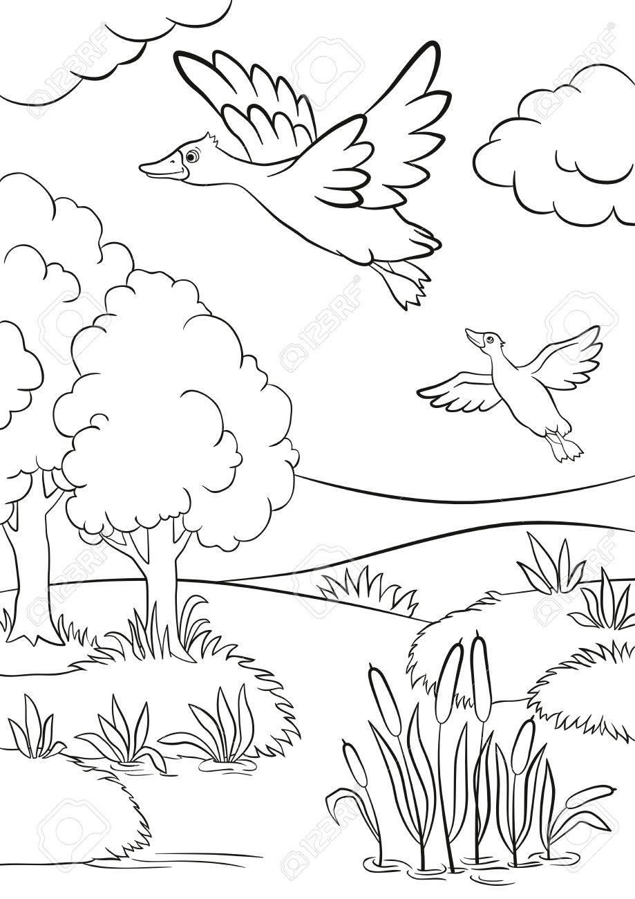 Coloriage Arbre Dete.Coloriage Deux Canards Volent Sous Le Lac Lac Dans La Foret Il Y