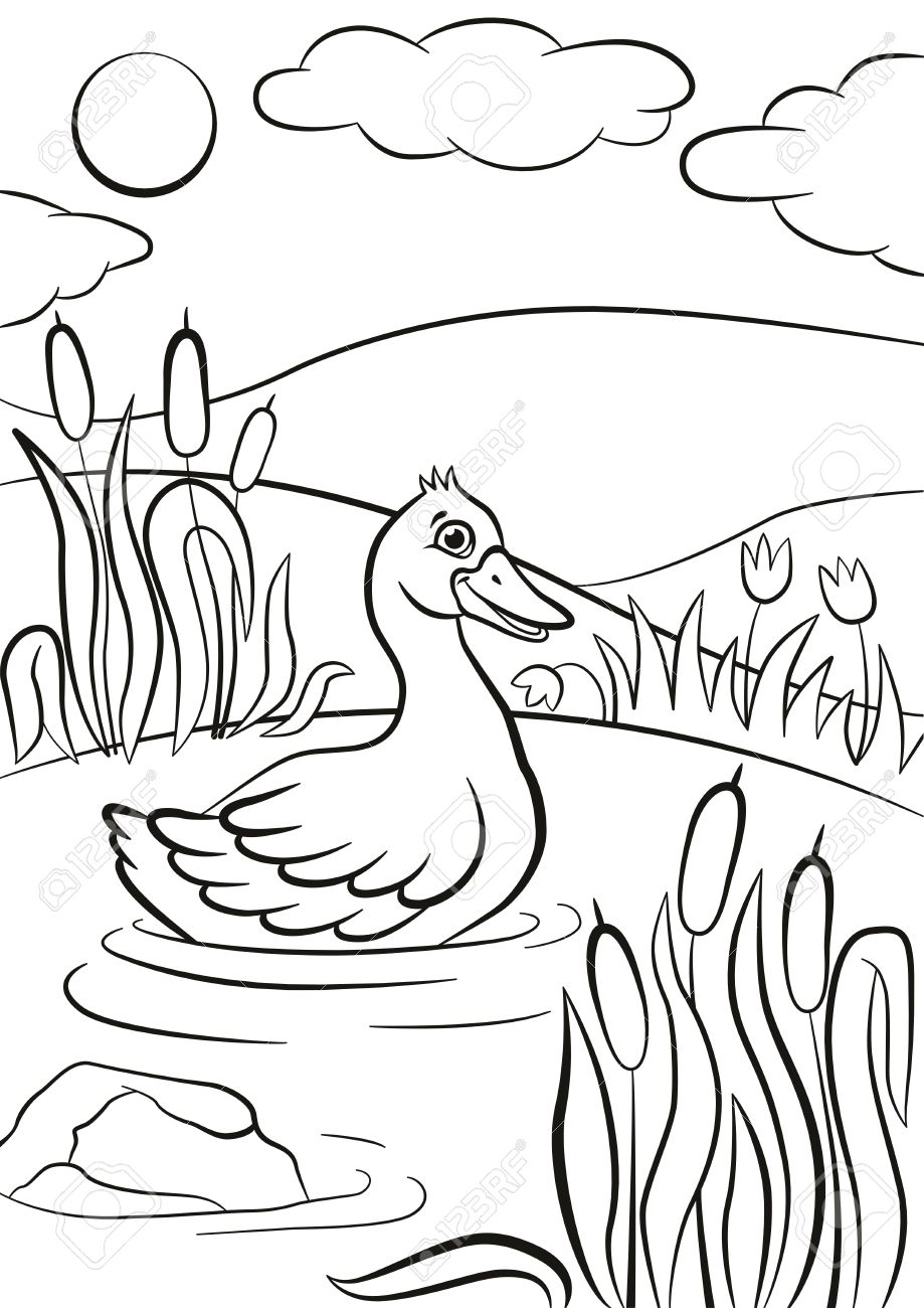 Páginas Para Colorear. Pequeño Pato Lindo Nadando En El Estanque. El ...