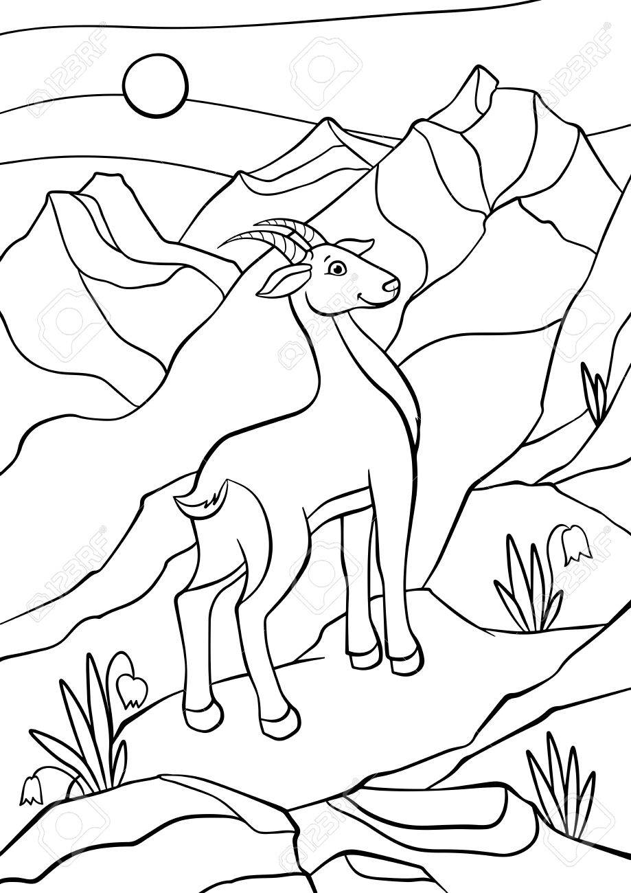 Páginas Para Colorear. Animales. El Pequeño Antílope Lindo Se ...