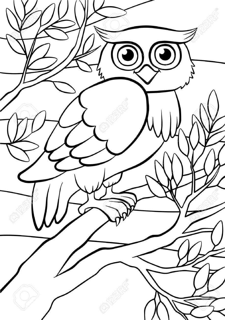 Coloring Pages Birds Cute Owl Sits On The Tree Royalty Free