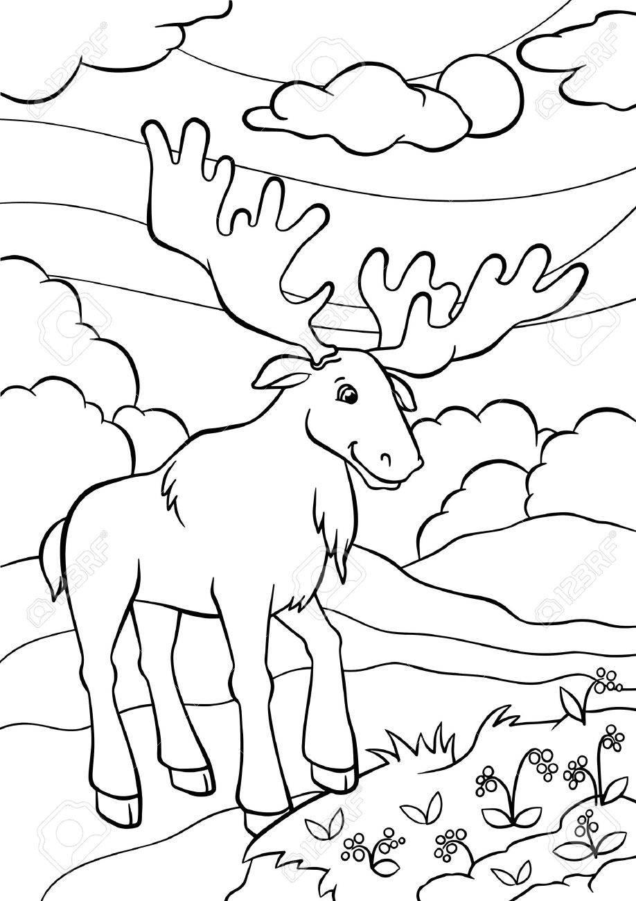 Páginas Para Colorear. Animales. Alce Lindo Se Encuentra En El ...