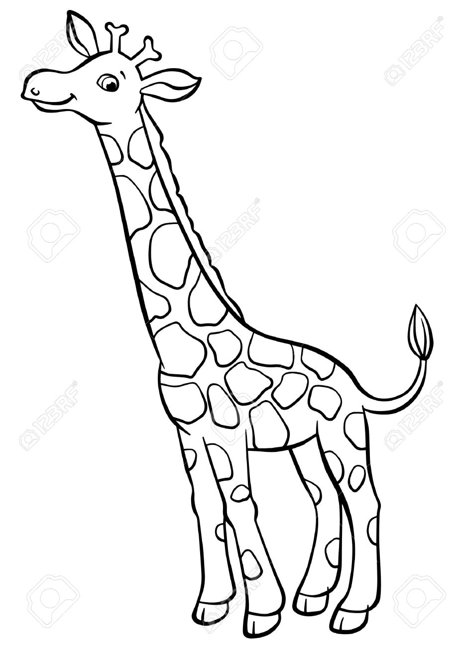 Coloring Pages Animals Little Cute Giraffe Stands And Smiles Stock Vector