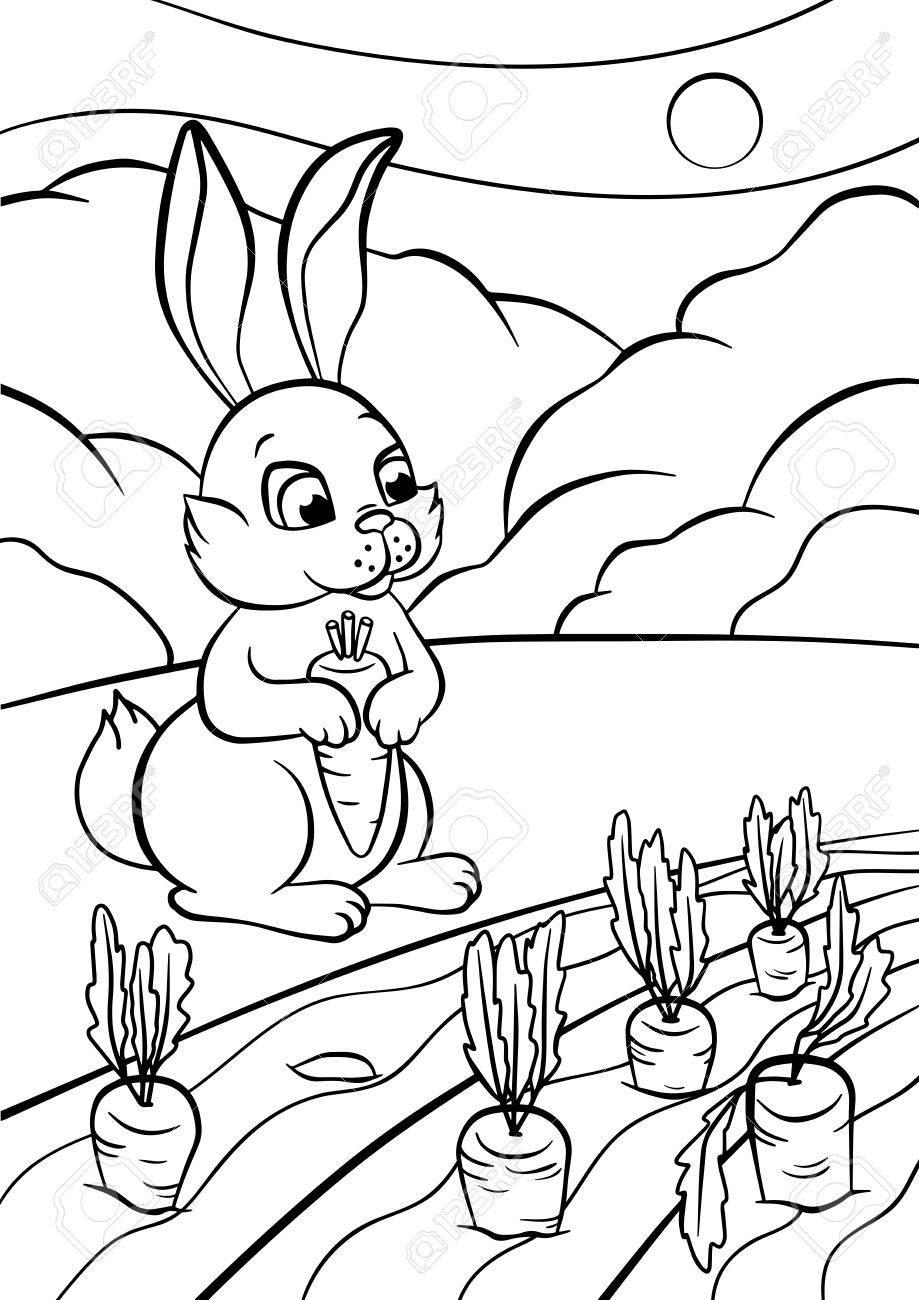 Páginas Para Colorear Animales Lindo Conejo Se Para Y Levanta La Zanahoria En Las Manos