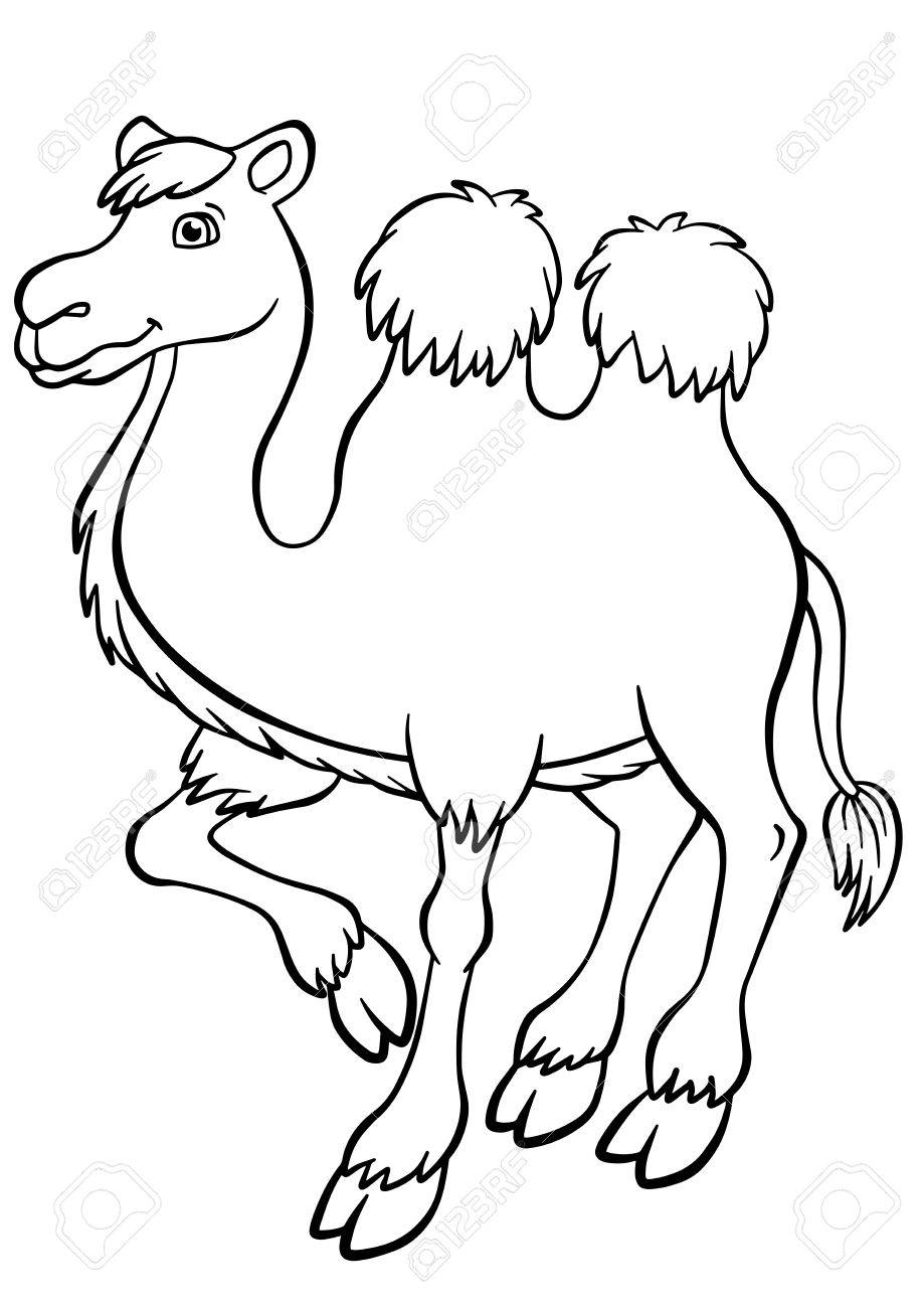 Coloring Pages Animals Cute Camel Stands And Smiles Stock Vector