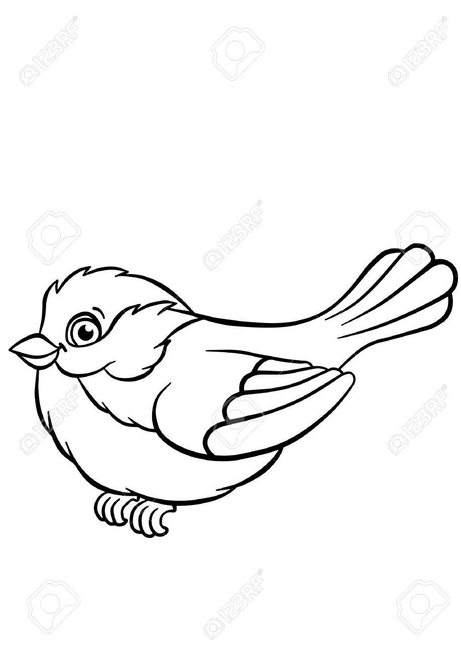 Coloring Pages. Birds. Little Cute Titmouse Sits And Smiles. Royalty ...