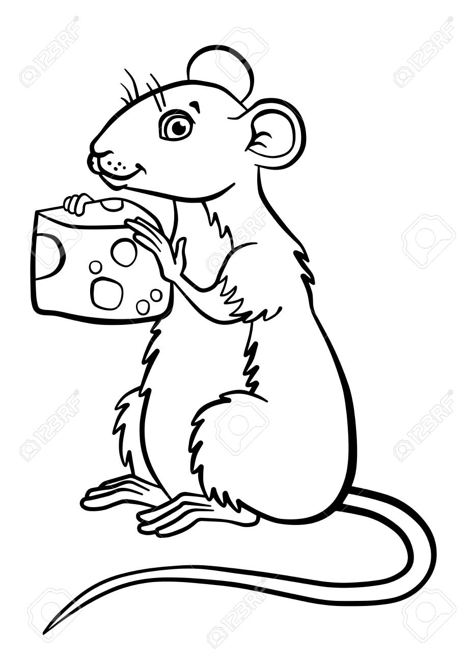 Coloring Pages. Animals. Little Cute Mouse Holds Cheese In The ...