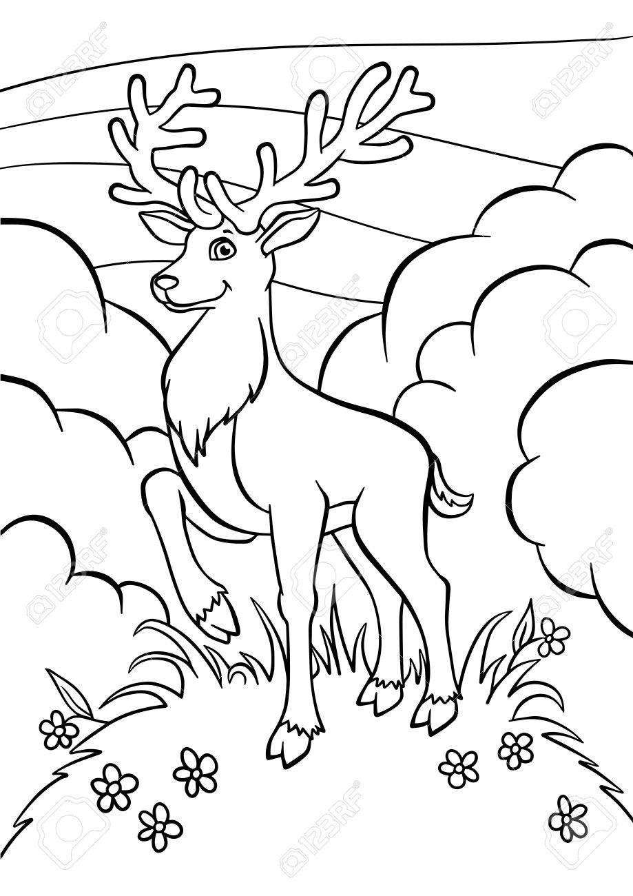Páginas Para Colorear. Animales. Mono Pequeño Ciervo Se Coloca Sobre ...