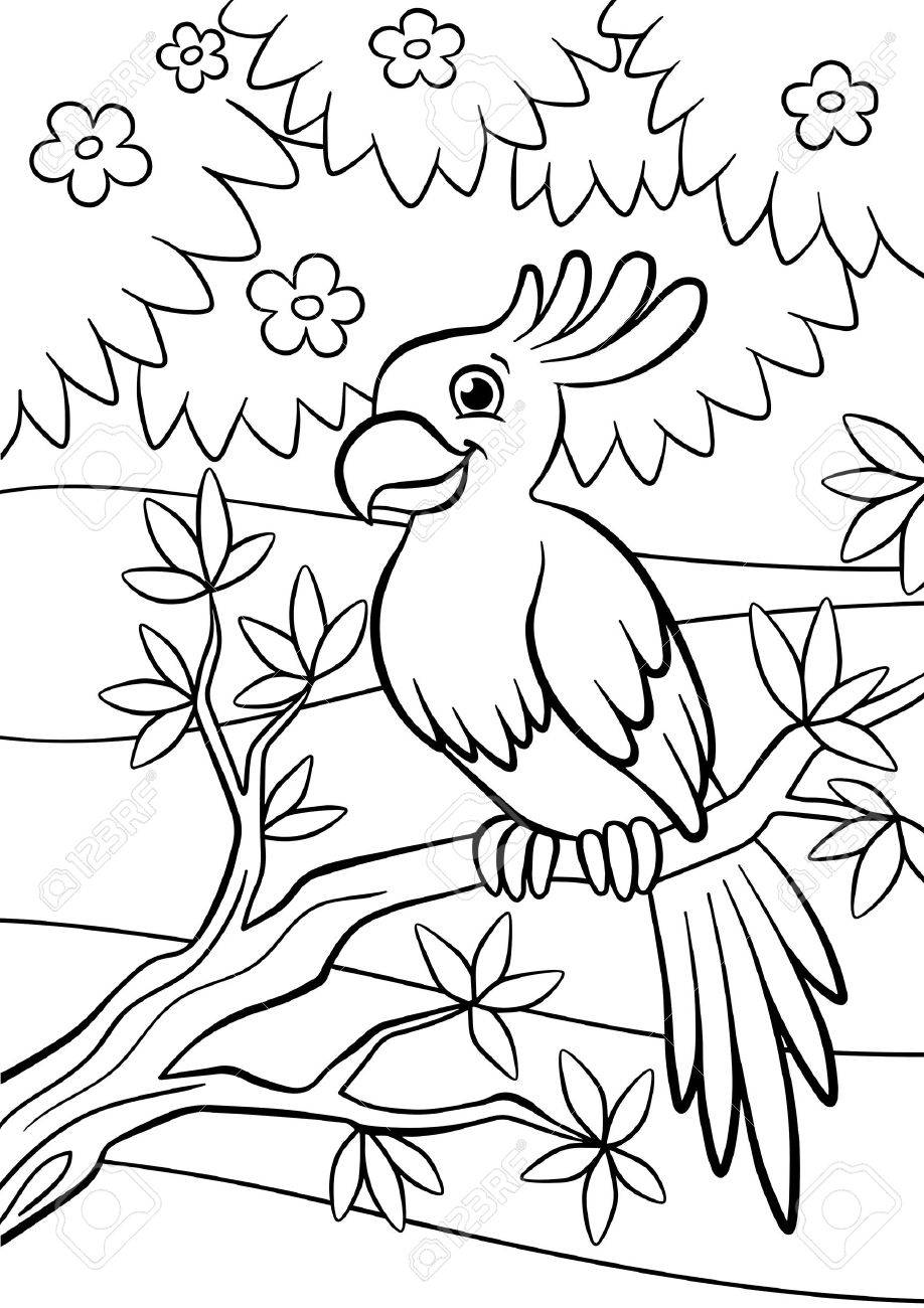Coloring Pages Birds Little Cute Parrot Sits On The Branch And Smiles Stock