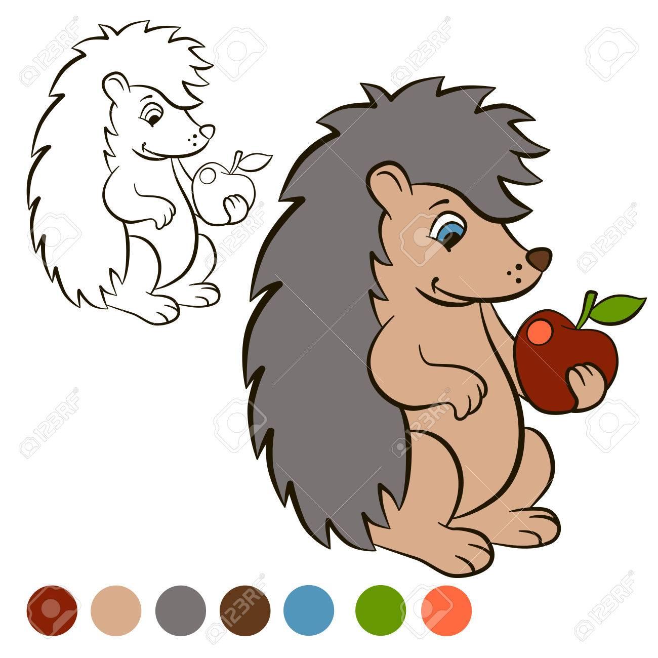 Malvorlage. Color me: Igel. Kleine niedliche Igel steht und hält einen  Apfel in der Pfote. Der Igel lächelt.