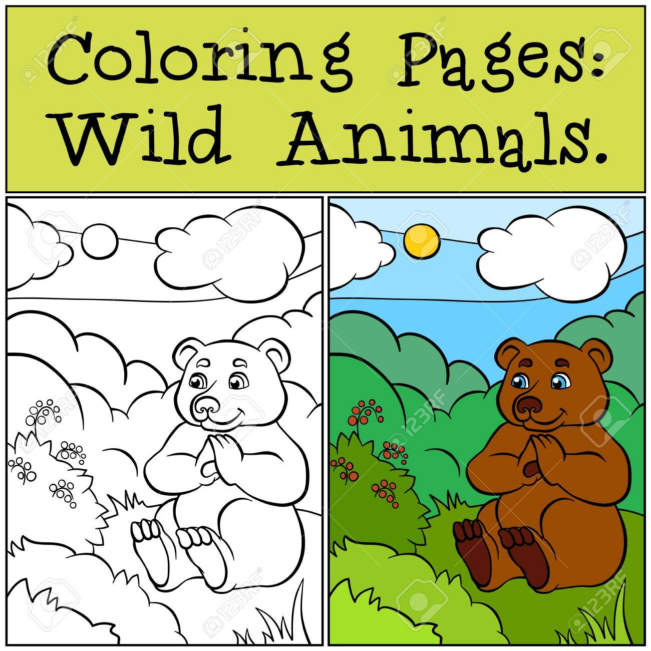Coloring Pages: Wild Animals. Little Cute Bear Sits On The Grass ...