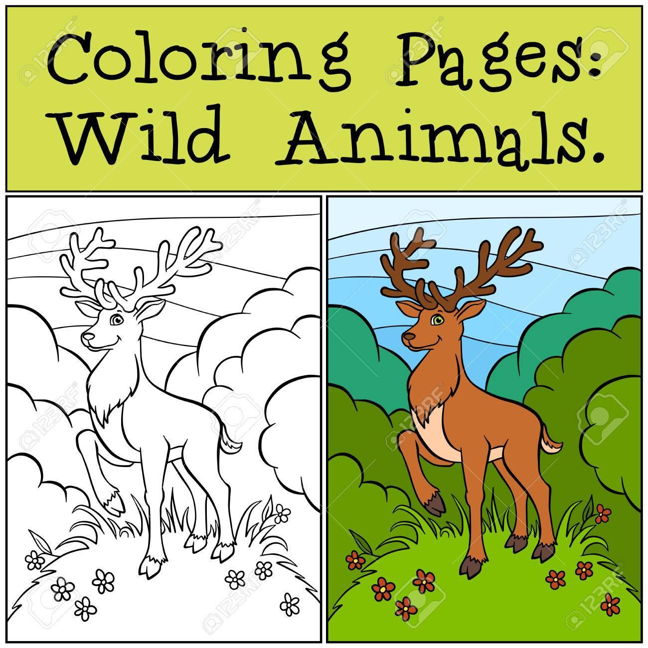 Páginas Para Colorear: Animales Salvajes. Ciervos Lindo Se Encuentra ...
